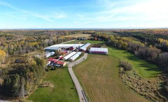 Grant's Brook Farms, LTD