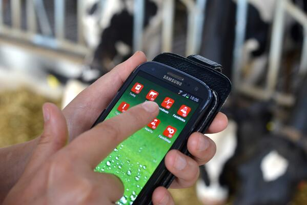 The Lely T4C management system is the prime source of information for your dairy farm.