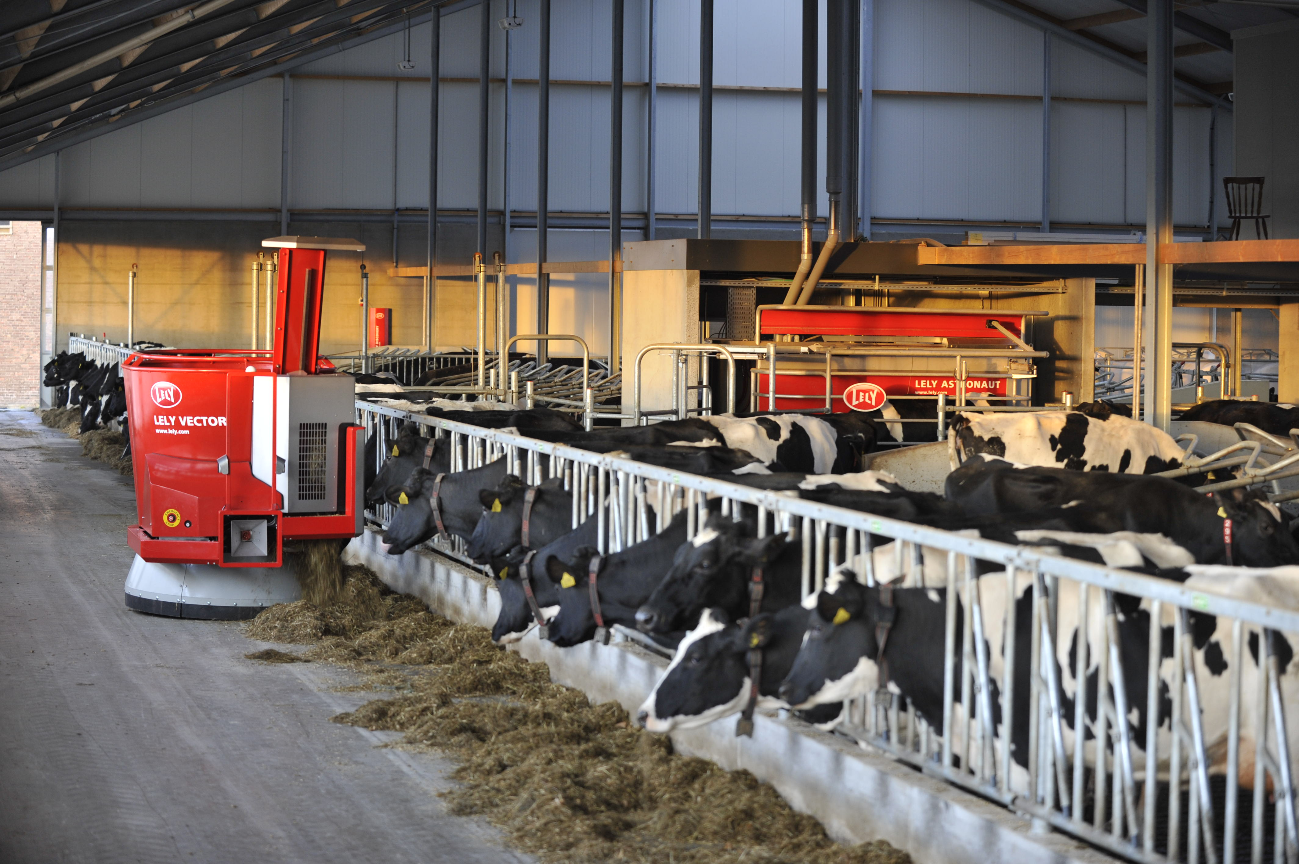 The grand prize winner of the 2018 The Way to Dairy Award will choose an Astronaut milking robot or a Vector automatic feeding system