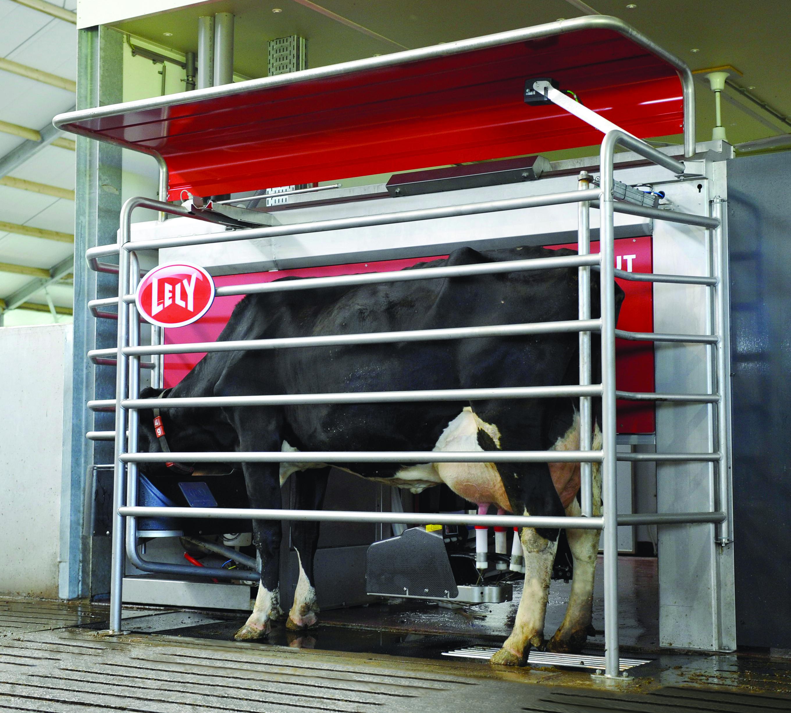 Milking robots can give you more insights that will allow you to breed more efficiently