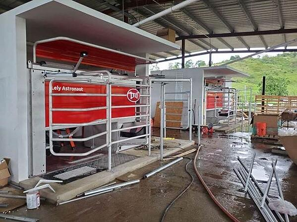 Puerto Rico - Lely Astronaut A5 robotic milking system