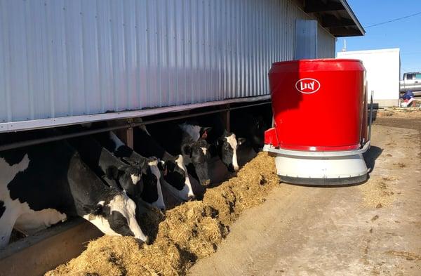 Lely Vector at Honey Creek Dairy