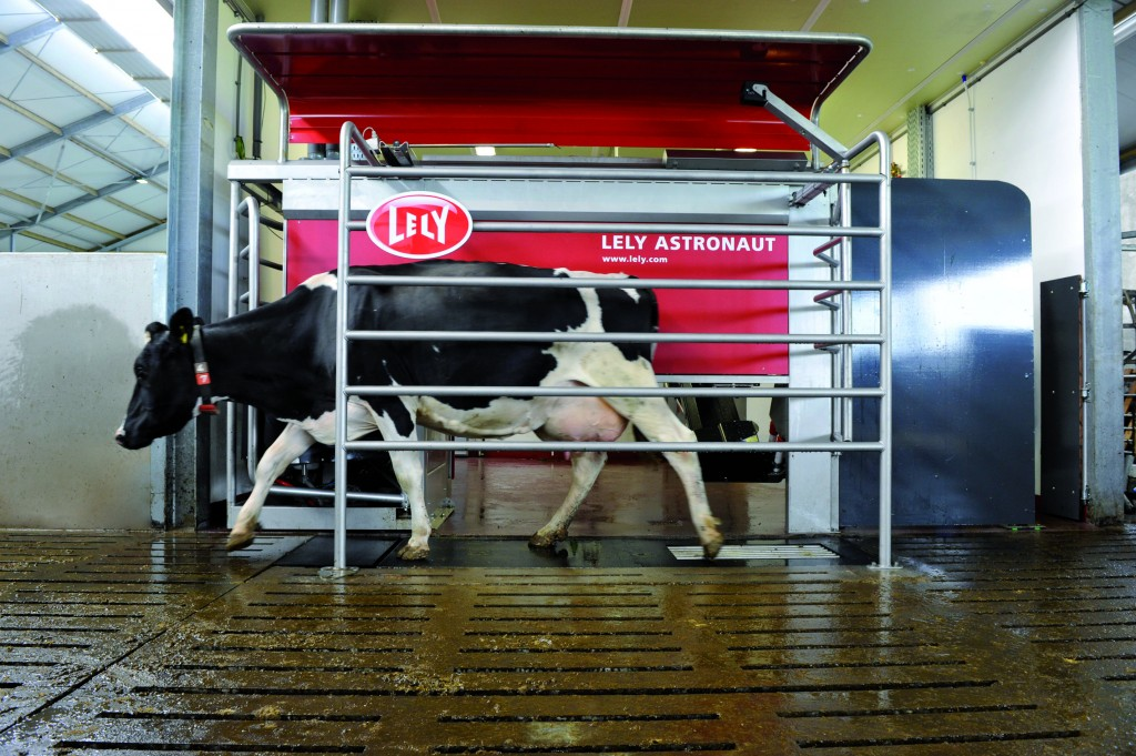 The Lely Astronaut A4 takes care of all the milking for you. If there is a problem, it will call your cell phone.