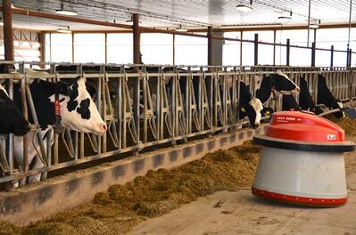 Lely Juno automatic feeder