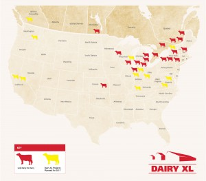 Large herd dairies with more than eight Lely robots are considered to be Dairy XL and a member of the Red Cow Community