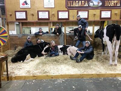 TD 4-H Dairy Classic participants pose with their heifers.