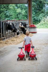 Sache family farm