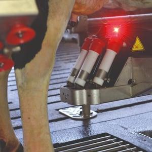 Astronaut robotic milking system laser