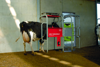 Use the Lely Grazeway to help monitor your cows and assist them in the transition to pasture.