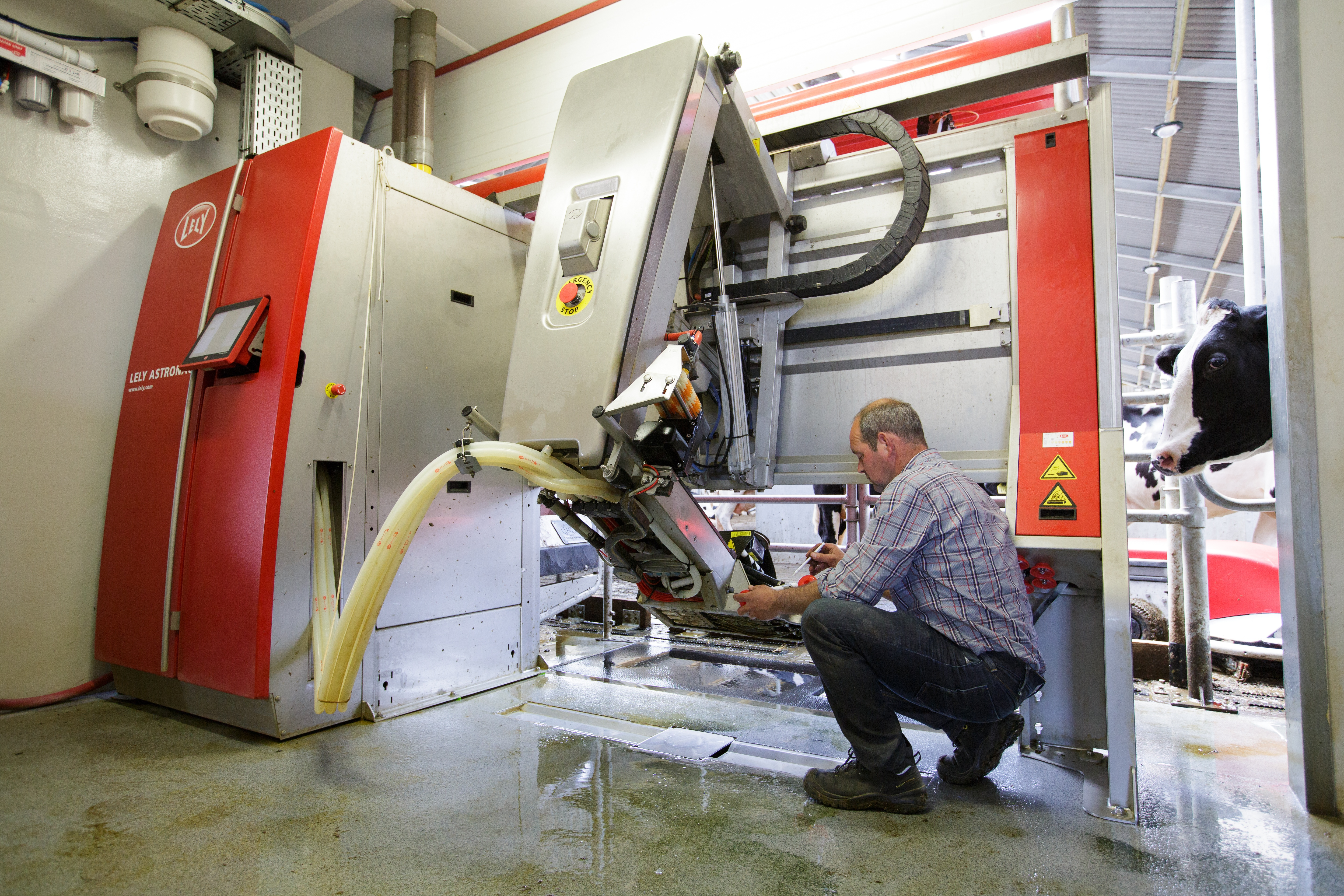 Daily milking robot maintenance will help you get the most out of your Lely Astronaut A4