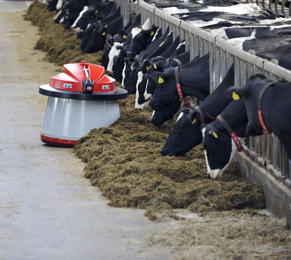 Keep feed in front of your cows and your feed alleys clean when you use the Lely Juno feed pusher.