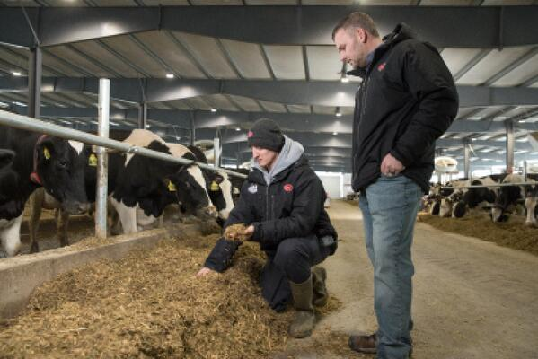 Lely Farm Management Support robotic milking startup