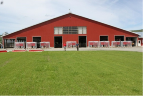 Dairy farm outfitted with Lely Astronaut milking robots.