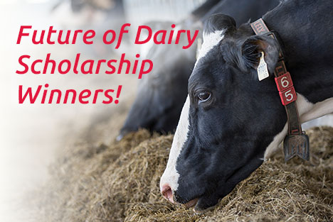 Lely Future of Dairy Scholarship winners 2020