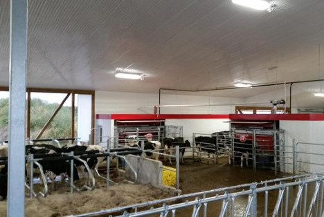 Lely start up barn