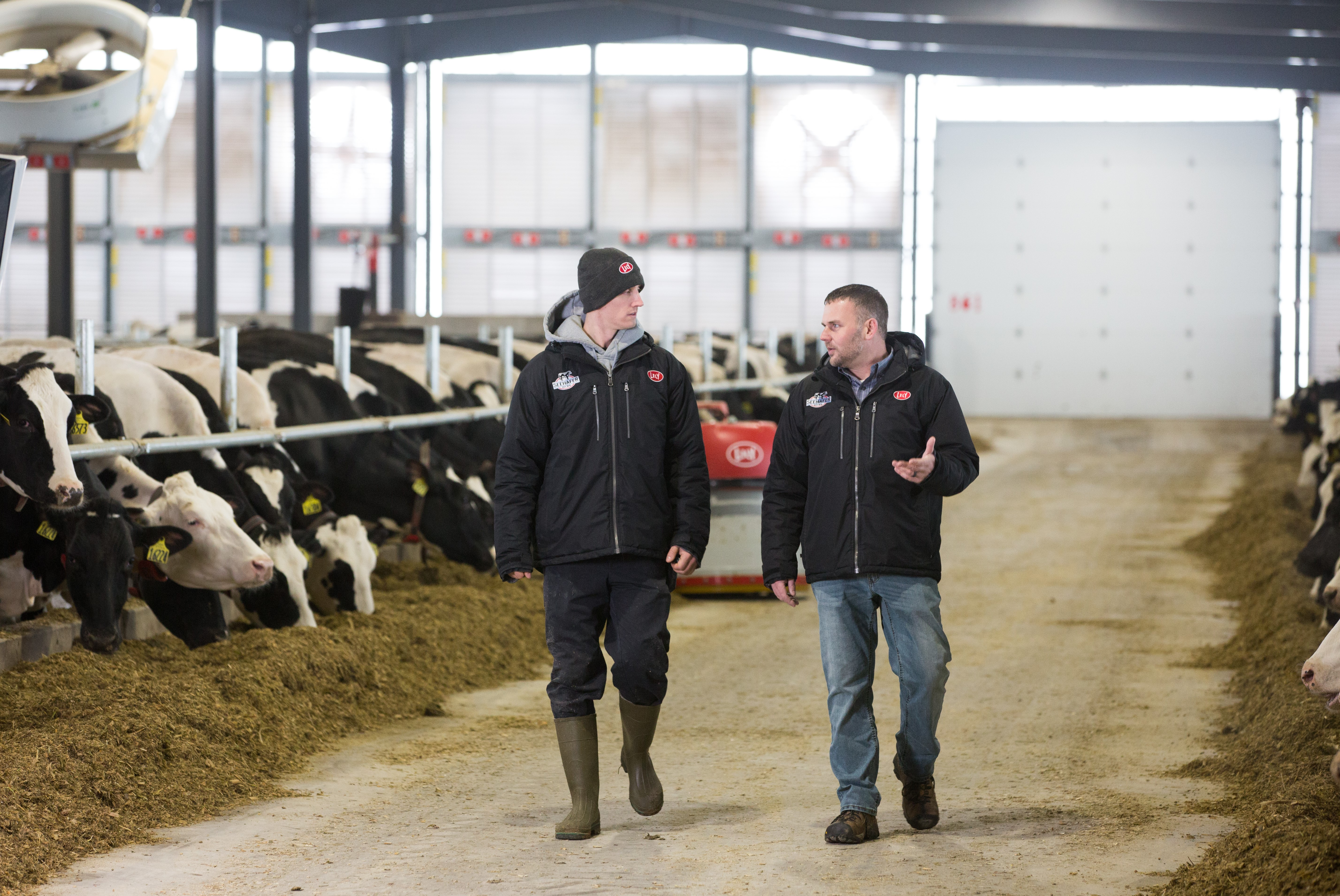 Future Sustainability of Dairy Farming